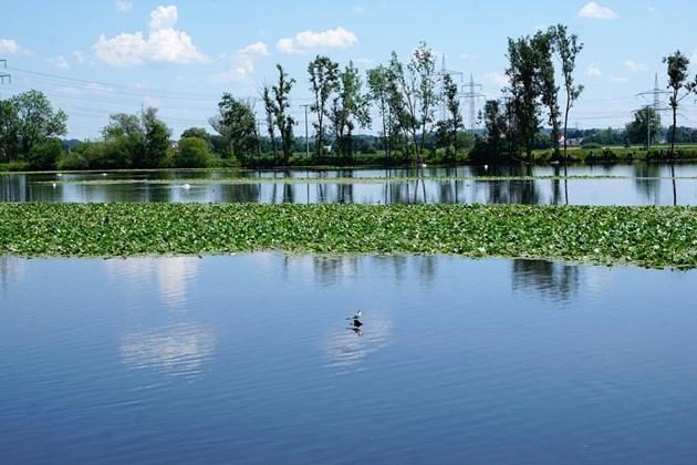 Модул: Управление на водите и екологията